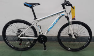 Cavalry 350 Competitive Aluminum Alloy Mountain Bicycle (FP-MTB-A064) pictures & photos