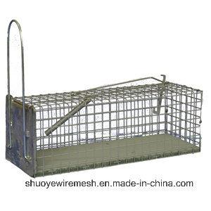 Foldaway/Chipmunk/Groundhog Trap Cage pictures & photos
