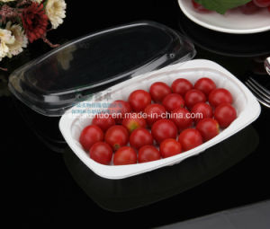 550ml Floral Printed Rice Noodle Disposable Plastic Food Tray pictures & photos