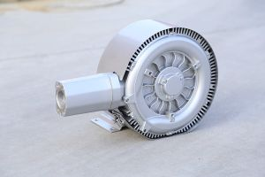 The Chinese Ce Approved Ring Blower pictures & photos