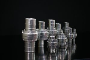 Couplings pictures & photos