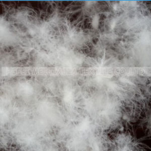 Buy High Quality Washed White Goose Down Fill 90/10 pictures & photos