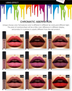38 Colors Lip Matte Lipstick Lipgloss Waterproof Long Lasting pictures & photos