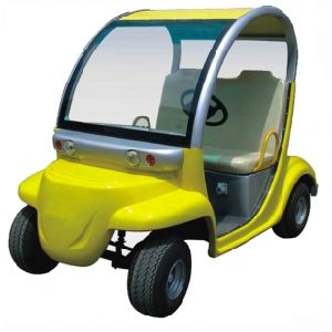 Cute Design 2 Seats Personal Electric Carrier Car pictures & photos