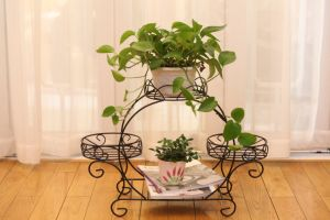 Metal Rack Flower Pot Stand/ Planter Display Shelf, Customized pictures & photos