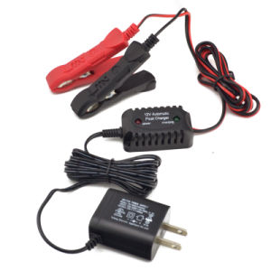600mA Battery Float Charger pictures & photos