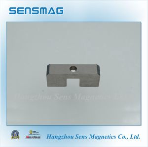 Special Shaped Permanent AlNiCo Magnet for Motor pictures & photos