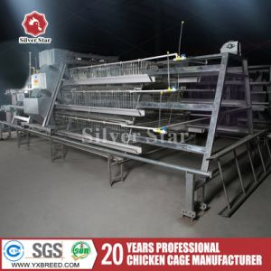 Poultry Chicken Cages a Type for Layers for Poultry Farms pictures & photos
