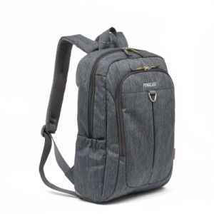 Backpack Laptop Computer Business Nylon Popular Leisure 15′′ Laptop Backpack pictures & photos