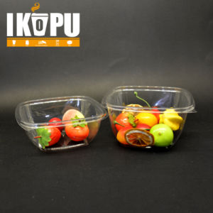 Custom Pet Plastic Salad Bowl with Lids pictures & photos