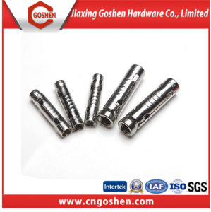 Stainless Steel 3 PCS Abchor Bolt pictures & photos
