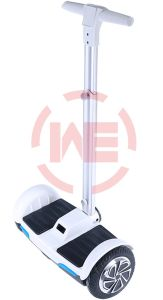 Electric Vehicle with Handle pictures & photos