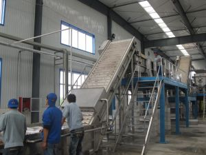 500kg per hour date palm syrup processing plant with juice and liquid syrup processing pictures & photos