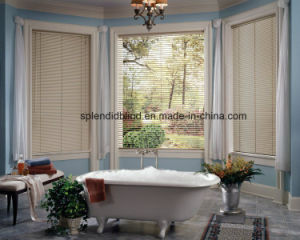Roller Windows Blinds Fabric Blinds Windows Curtain Blinds pictures & photos