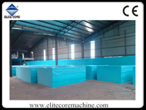 Fully Automatic Continuous Foam Producing Machine pictures & photos