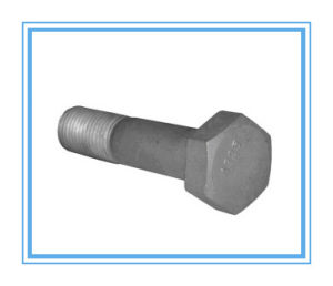 Heavy Hex Bolt with HDG (A325) pictures & photos