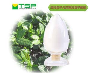 GMP Factory Supply Natural Green Tea Extract 90% Ec, 95% Ec pictures & photos