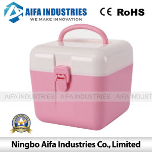 Plastic Mold for OEM Storage Box