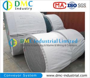 Conveyor Belting Manufacturer pictures & photos