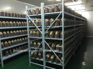 Natural Red Yeast Rice Powder Supplier Monacolin K 5% pictures & photos