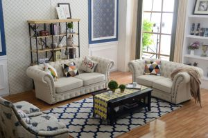 Popular American Style Sofa for Living Room Furniture pictures & photos