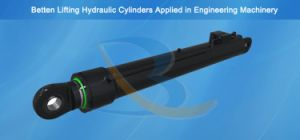 Hydraulic Cylinder for Press pictures & photos