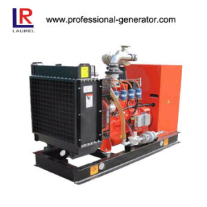 30kw Natural Gas Generator with Leroy Somer Alternator pictures & photos