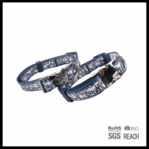 Sublimated Nylon Ribbon Pet Dog Collar with Metal Buckle pictures & photos
