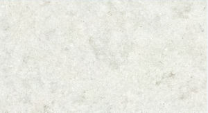 Classic Bluestone Glazed Porcelain Tiles 600X600mm (DT01) pictures & photos