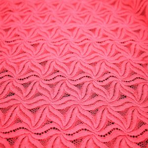 New Design Polyster Lace Fabric for Wholesale pictures & photos