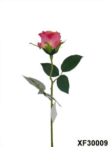 Artificial/Plastic/Silk Flower Single Stem of Rose (XF30009) pictures & photos