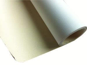 Art Canvas Light Brownish Polyester and Cotton Blended Inkjet Canvas Matte pictures & photos