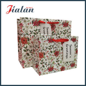 Professional Manufacturer Custom Made Mother`S Day Wholesales Retail Paper Bag pictures & photos