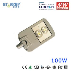COB Chip 100W Street Light with Meanwell Driver