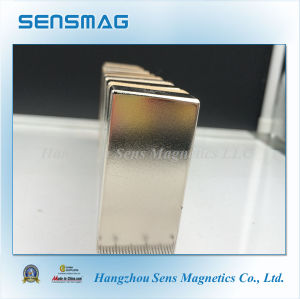 Manufacture Customized Powerful NdFeB Permanent Neodymium Magnet for Motor pictures & photos