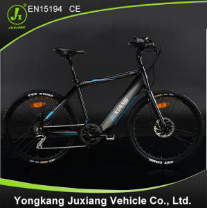 Good Quality and Fashion Electric Bike Tdf56z pictures & photos