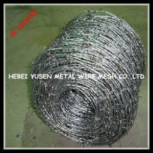 Good Price Barbed Wire Fence Manufacture pictures & photos