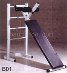 Adjustbale Sit up Bench Fitness Bench Factory