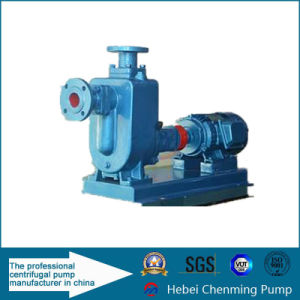 Self-Priming Horizontal Centrifugal Sewage Pump System for Sale pictures & photos