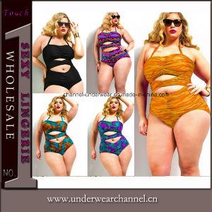 Women′s Plus Size Bikini Swimwear Swimsuit Swim Wear Beachwear (TYQ067-1) pictures & photos