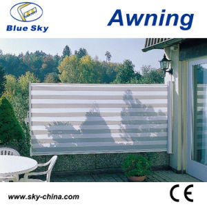 Indoor Aluminum Retractable Side Screen Awning (B700) pictures & photos