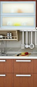 Kitchen Cabinets with Pullout System pictures & photos