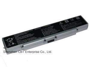 OEM Battery for Sony Vaio Vgp-BPS9b Vgp-BPS9 Vgp-BPS9a Vgp-Bpl9 6cell Silver pictures & photos