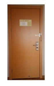 Practical Interior Wooden Door