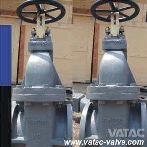 JIS Std Cast Iron RF Flanged Ends Marine Gate Valve pictures & photos