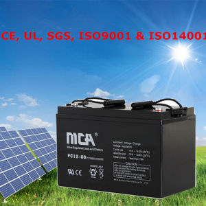 Battery Pack Rechargeable 12V Deep Cycle Batteries 12V75ah pictures & photos
