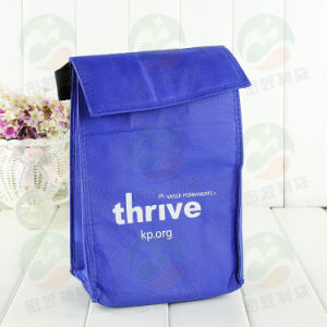 Non Woven Cooler Bag Customized with Logo M. Y. C. -002 pictures & photos