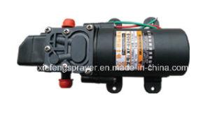 Battery Power Knapsack Sprayer pictures & photos