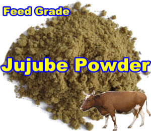 Jujube Powder for Feed with Low Price (export grade) pictures & photos