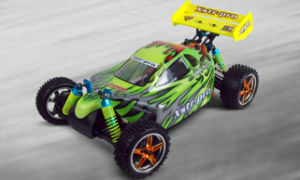 Hsp 1/10 Xstr PRO Electric Brushless Powered off Road Buggy Hobby Model